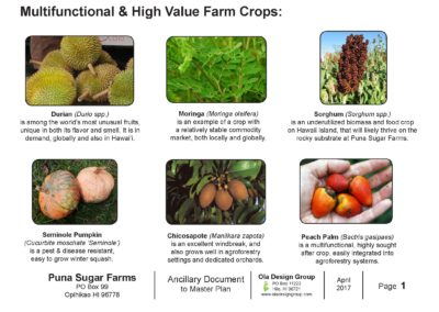 Puna Sugar Farms Multifunctional and High Value Farm Crops